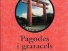 Pagodes_i_gratacels