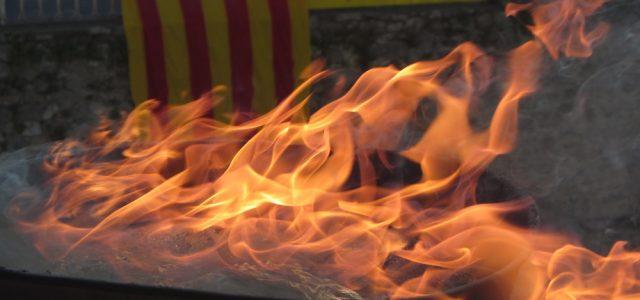 Recollida de la Flama al Castellet de Perpinyà Transferiment de la Flama al Coll de Milleres Transport de la Flama regenerada de Fillols a Vilafranca Festa amb les escoles a […]