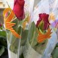"""FIRA DEL LLIBRE SANT JORDI 2014  Dimecres 23 d'abril De 9h a 17h Plaça de """"l'Appel du 18 Juin"""" (en cas de pluja, Hotel Hostalrich) PRADA Organitza : Casal […]"""