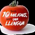 Dissabte 22 de febrer de 2020, el nostre president Jordi Taurinyà, acompanyat per l'Enric Balaguer va participar a l'Assemblea General de la Plataforma per la Llengua a la Universitat Pompeu […]